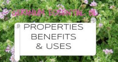 Geranium Essential Oil - Benefits & Uses