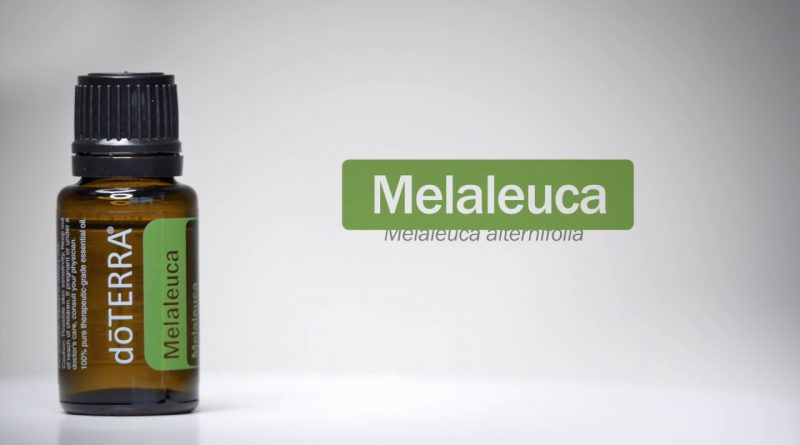 doTERRA® Melaleuca (Tea Tree) Oil Uses and Benefits