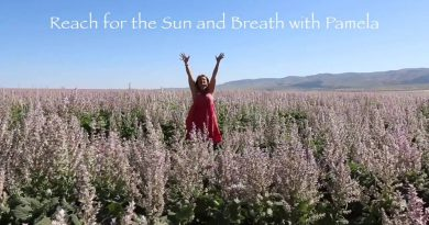 Clary Sage Essential Oil + Energy Medicine