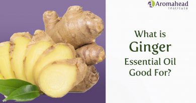 What is Ginger Essential Oil Good For?