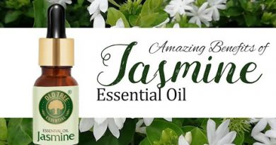 Old Tree Jasmine Essential Oil For Hair Care.