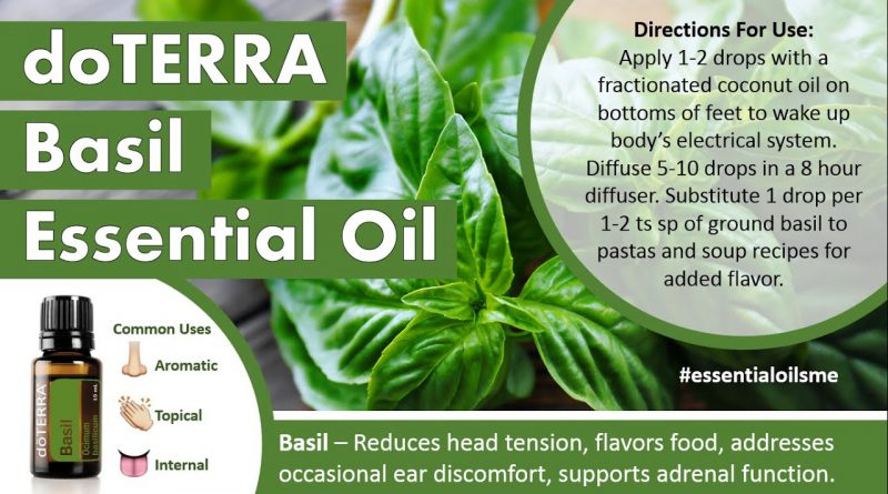 Outstanding doTERRA Basil Essential Oil Uses