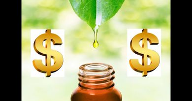 The 10 Most Expensive Essential Oils in the World (2019)