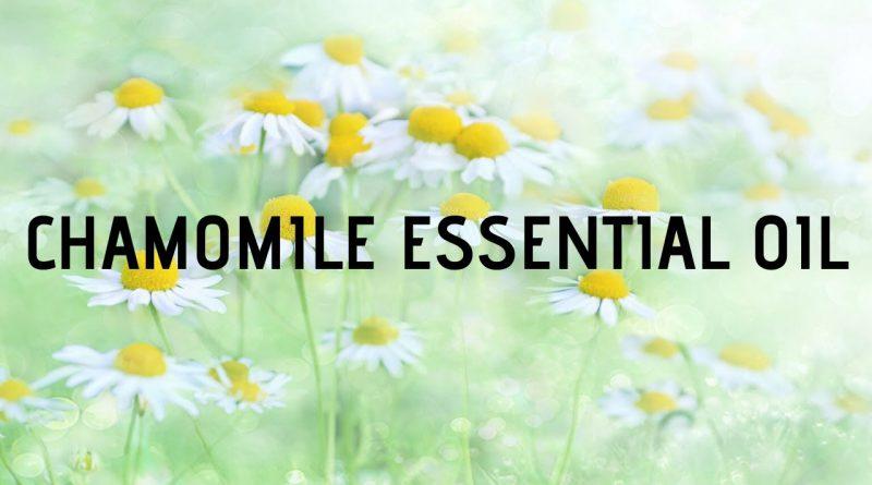 Chamomile essential oil uses