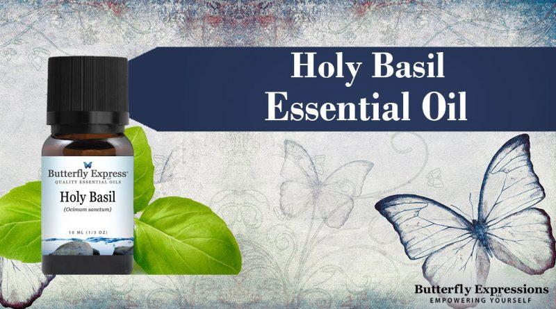 Holy Basil Essential Oil