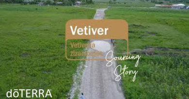 doTERRA Co-Impact Sourcing Vetiver