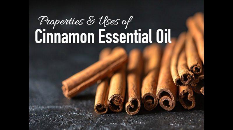Properties and Uses of Cinnamon Bark Essential Oil