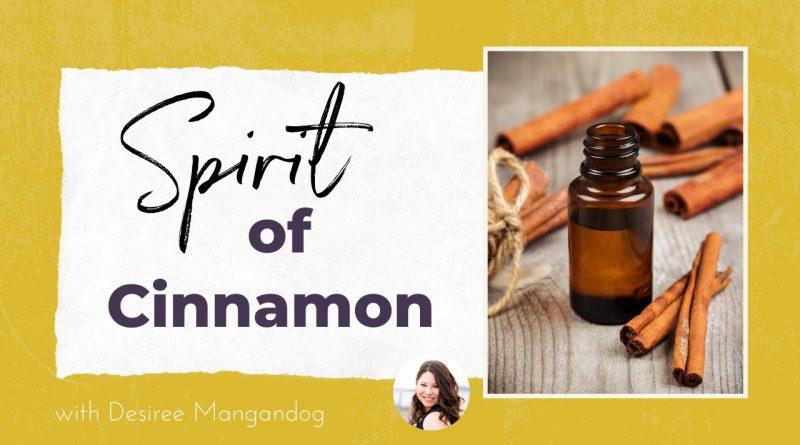 Spirit of Cinnamon Essential Oil