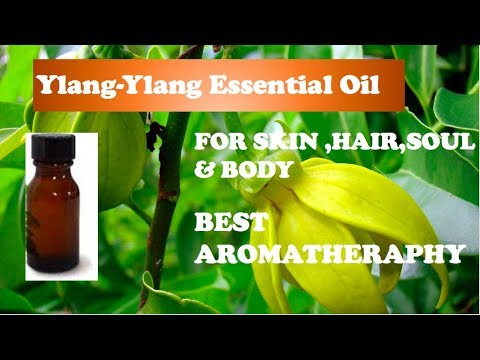 Ylang Ylang Essential Oil Benefits-Aromatherapy - Hair Growth& Skin